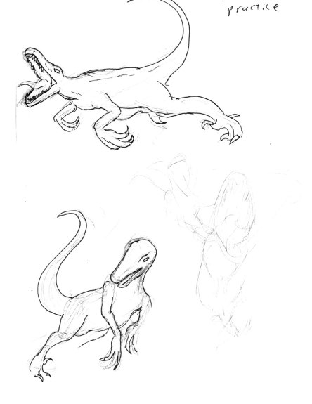 Raptor Practice
